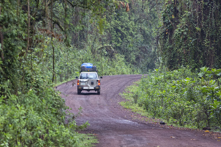 Driving Harenna forest