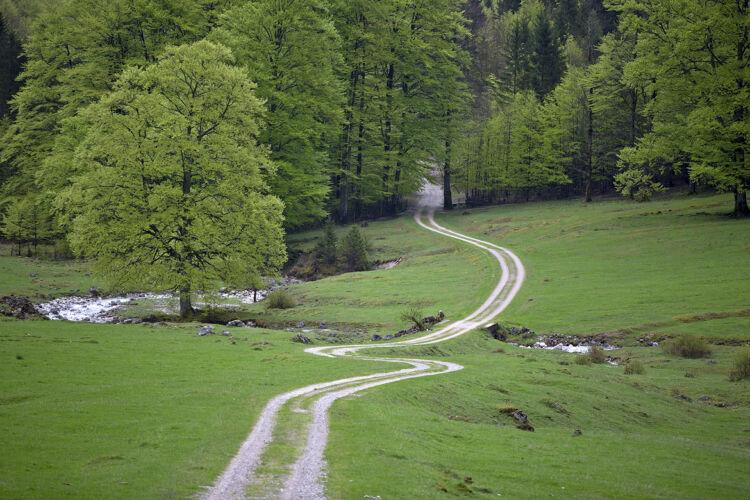 Road kalkalpen