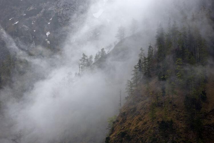 Fogy mountains