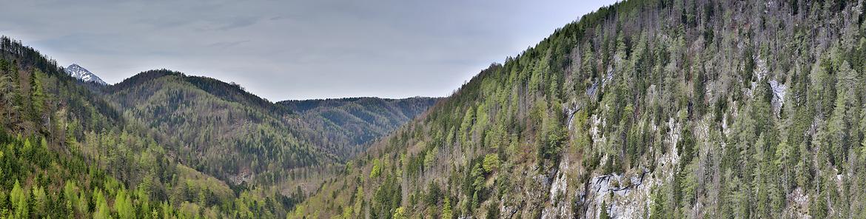 Kalkalpen panorama
